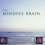 The Mindful Brain - Book